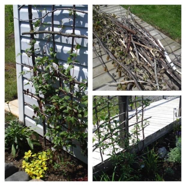 twigs-678x678